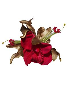 Minx's Accessories Gold Lily And Red Orchid Hair Clip