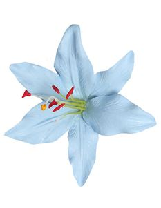 Lady Luck's Paloma Hand Painted Baby Blue Lily Flower