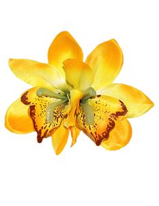 Lady Luck's Gigi Double Yellow Orchid Hair Flower