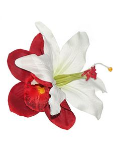 Lady Luck's Billie Red Orchid And White Lily Flower
