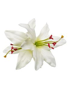Lady Luck's Paloma Double White Lily Hair Flower