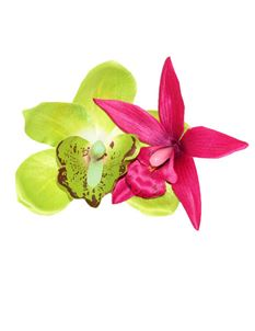 Lady Luck's Kiki Lime Green And Cerise Hair Flower