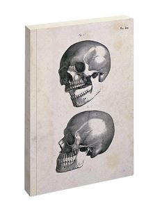 Jay Biologica Skulls Writing Pad Ruled Notebook