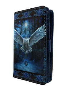 Nemesis Now Awaken Your Magic Owl Purse By Anne Stokes