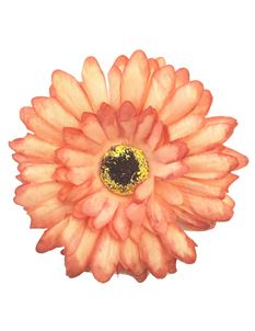 Gas Axe Inc Daisy Hair Flower Clip Or Brooch