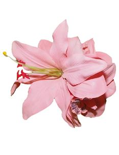 Minx's Accessories Pink Lily And Orchid Hair Clip